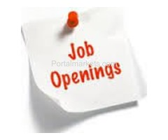 Part time, full time Jobs, Par day 250/-  earn up to 500/-