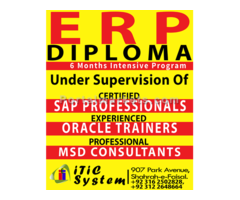 ERP Diploma with Internship in Multinational Company