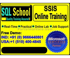 SSIS and BI DW Online Training at SQL School