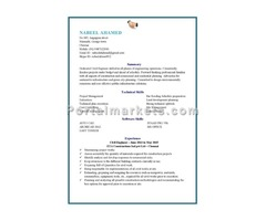 Civil engineer with three years of experience