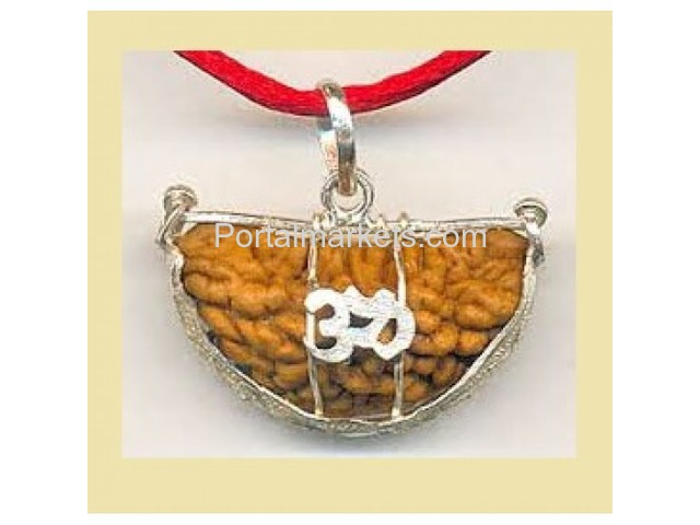 1 mukhi rudraksha only rs 2100 from genuinerudraksha.in - 1/4