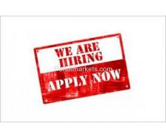 Urgent Hiring For Business Development Executive in Telesales