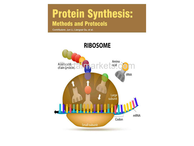 Protein Synthesis: Methods and Protocols - 1/1
