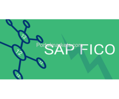 Attend SAP FICO Training Institute in Delhi NCR