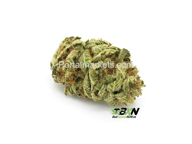 buy best quality medical products (violator) from weedmaps - 1/1