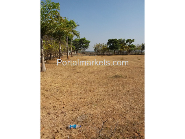 Group booking for Software employees DTCP approved plot at Maheswaram - 2/3