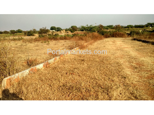 Plot with very low cost for sale at Hyderabad - 1/2