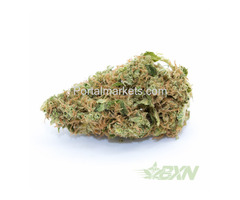 Critical Kush – Marijuana Online Canada - Bud Express Now