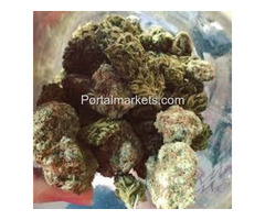 Order Blue Dream Strain Online