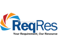 Reqres India Private Limited - Best Staffing and Recruiting Agency