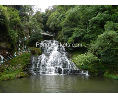 Andaman honeymoon packages-Port Blair holidays packages
