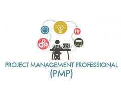 PMP® Training in Chicago