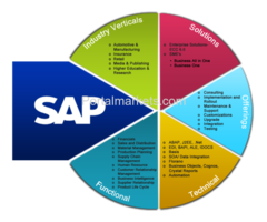 sap basis video tutorials
