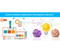 Custom Software Application Services in Hyderabad