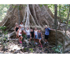Explore some of the most unique sides of the jungle with the Vietnam Trekking tours!