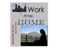 Royal Info Service Offer Work at Home