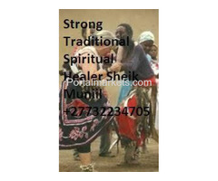 Traditional Healer & Astrologer Sheik Muniil +27732234705
