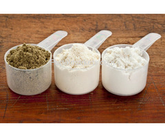 Whey protein powder supplier, manufacturer & exporter
