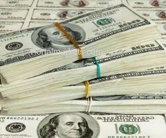 Business Loan Offer Contact Urgently.