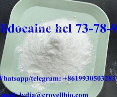 lidocaine hcl powder from China supplier lidocaine hcl