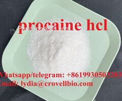 procaine hcl with safe shipping supply procaine hcl powder
