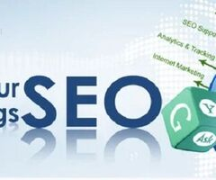 We provide solution for onpage and offpage seo
